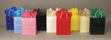 High Gloss Shopping Bags 8in.H x 4in.D x 10in.W